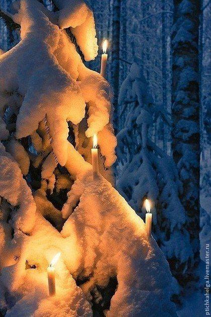 Красивые картинки зимы на заставку телефона (9)