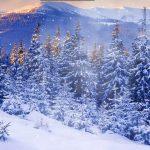 Красивые картинки зимы на рабочий стол в хорошем качестве