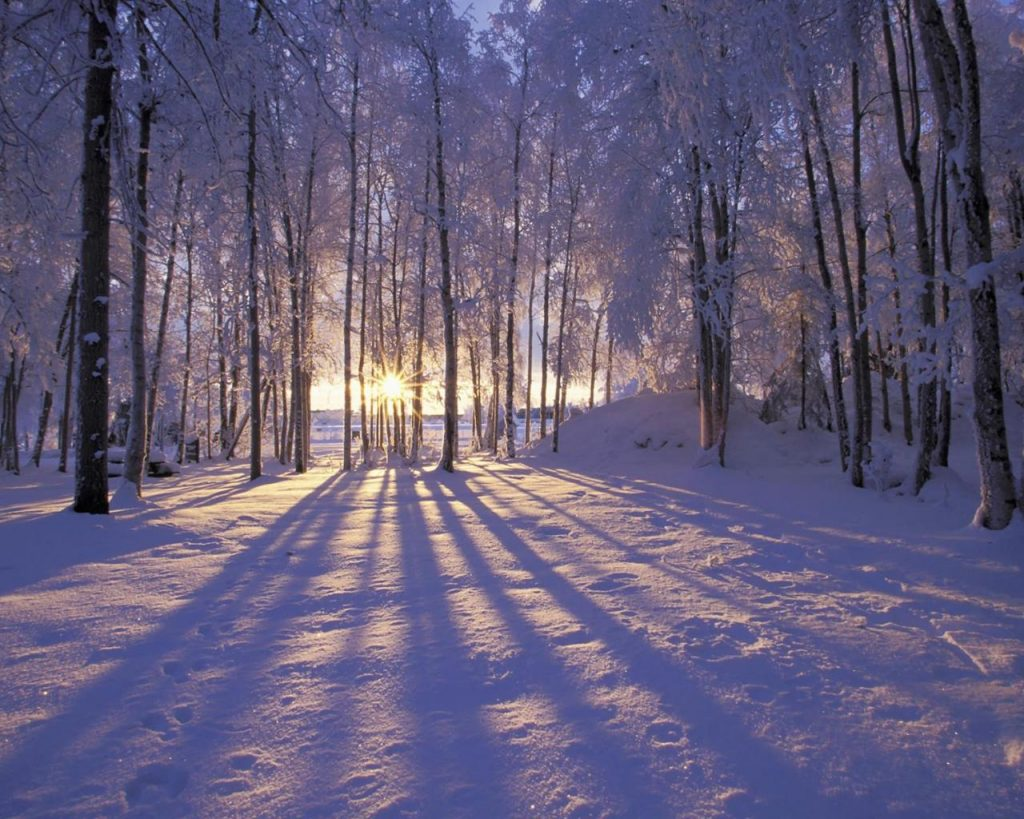 Красивые картинки зимы на рабочий стол в хорошем качестве (14)