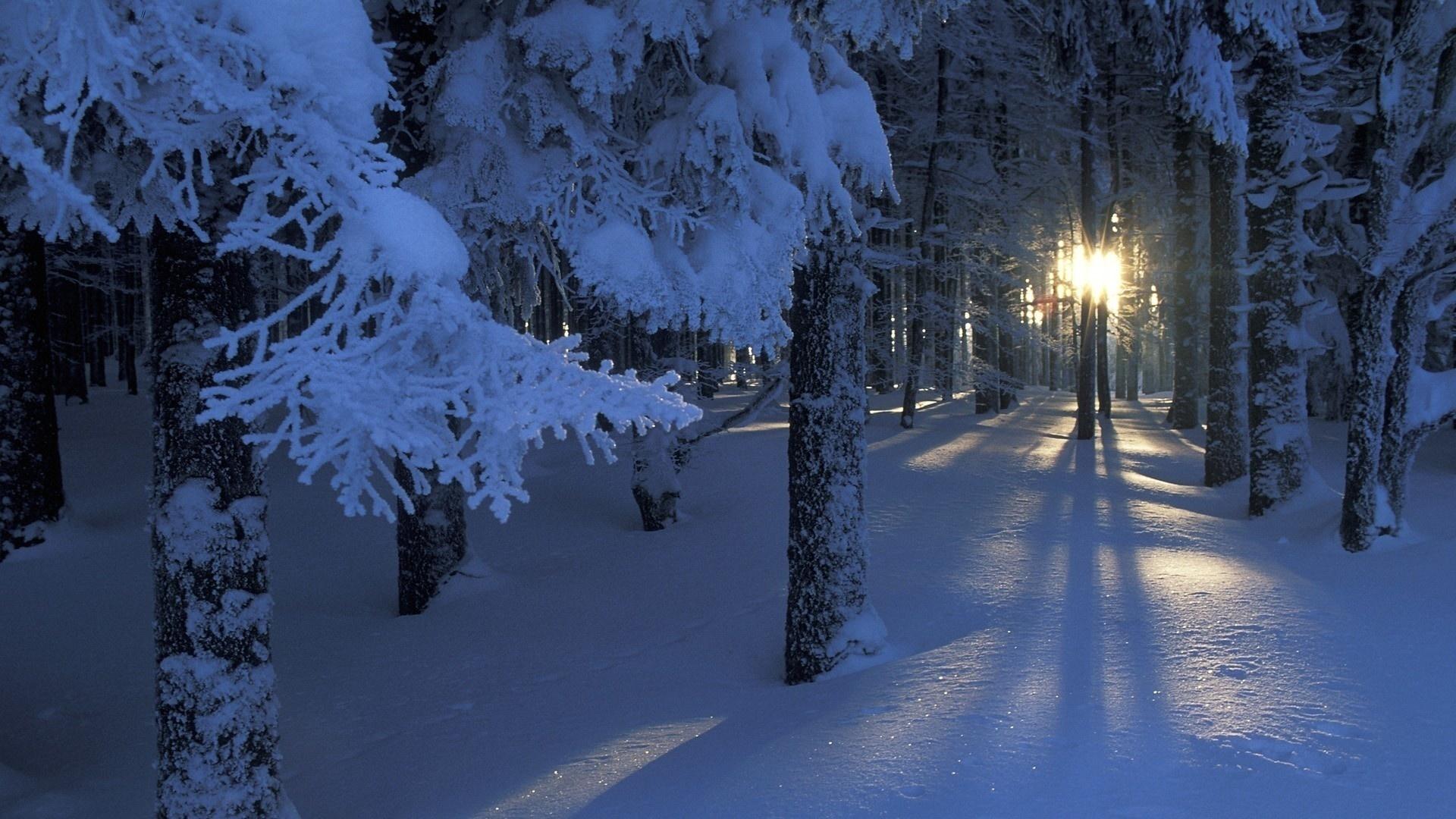 Красивые картинки зимы на рабочий стол в хорошем качестве (23)