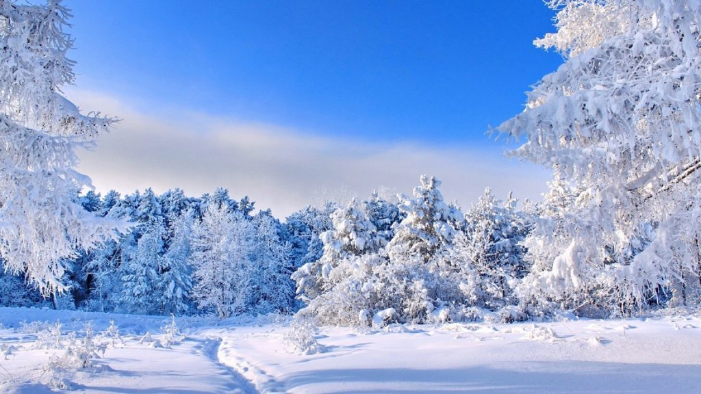 Красивые картинки зимы на рабочий стол в хорошем качестве (24)