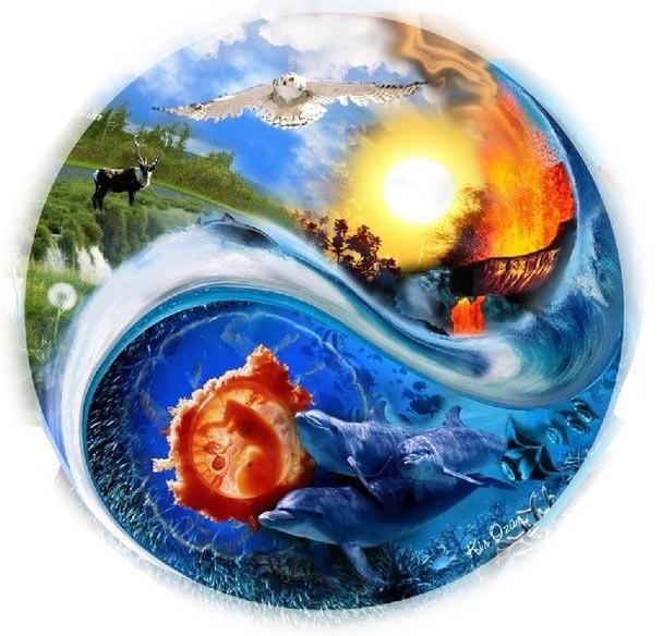 Красивые картинки и рисунки про окружающую среду (12)