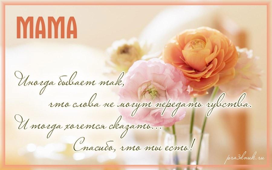 Красивые картинки на День матери в России (5)