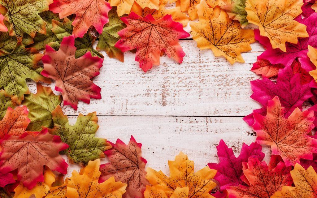 Красивые картинки ноября на рабочий стол (15)