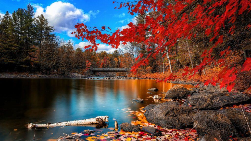 Красивые картинки поздняя осень на рабочий стол (1)