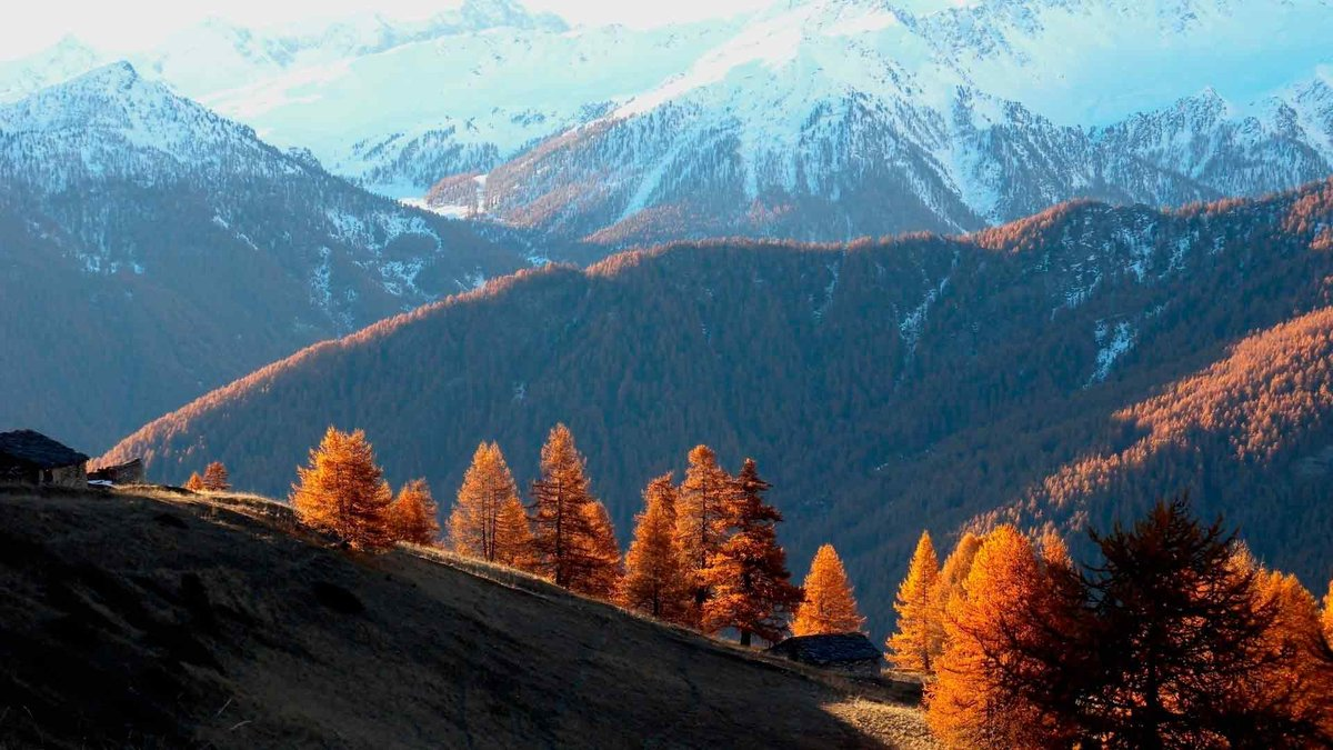 Красивые картинки поздняя осень на рабочий стол (16)