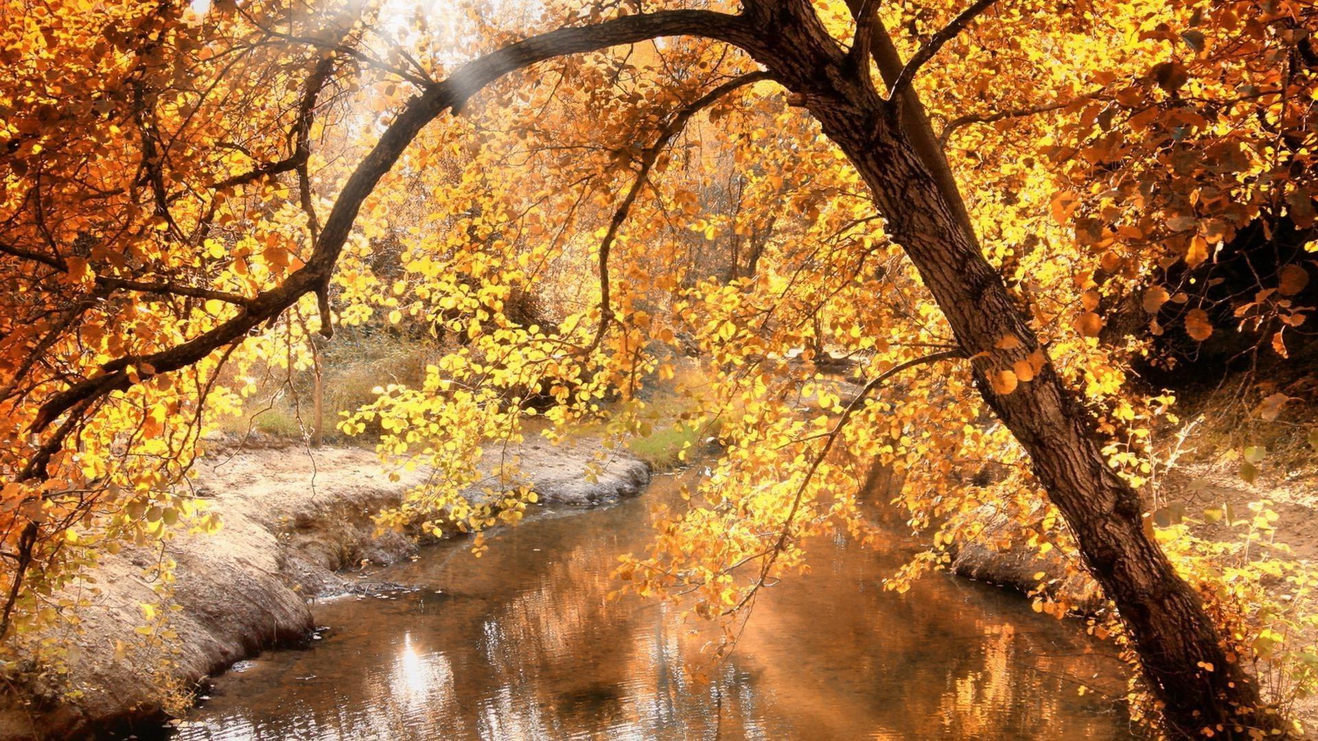 Красивые картинки поздняя осень на рабочий стол (20)