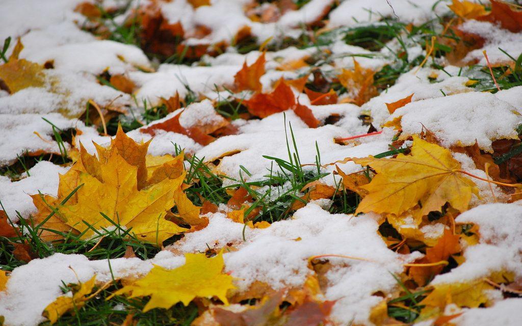 Красивые картинки поздняя осень на рабочий стол (3)