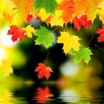 Красивые картинки поздняя осень на рабочий стол