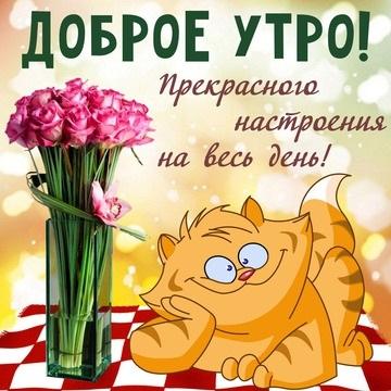 Красивые открытки с добрым утром и хорошим настроением017