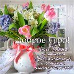 Красивые открытки «с добрым утром и хорошим настроением»