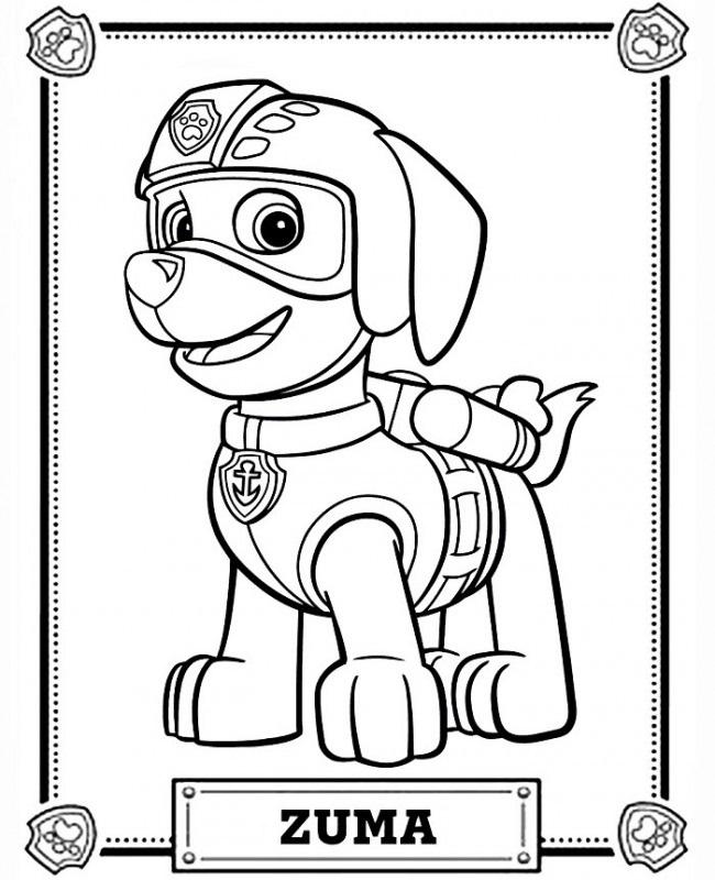 Красивые рисунки Щенячий патруль для срисовки009