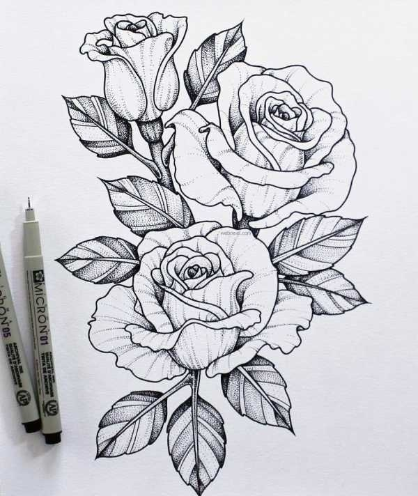 Красивые рисунки в блокноте для срисовки015