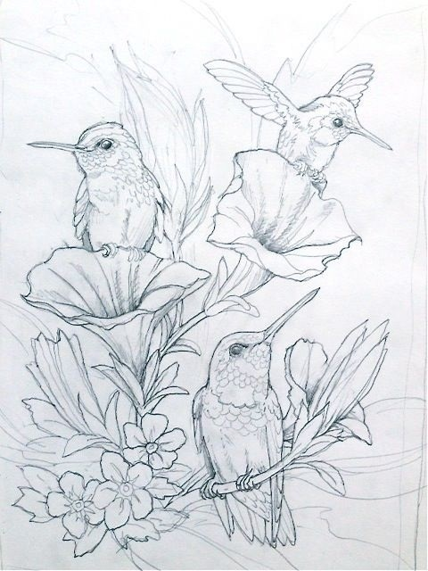 Красивые рисунки раскраски для срисовки006
