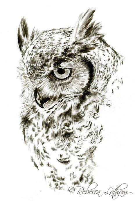 Красивые рисунки совы для срисовки005
