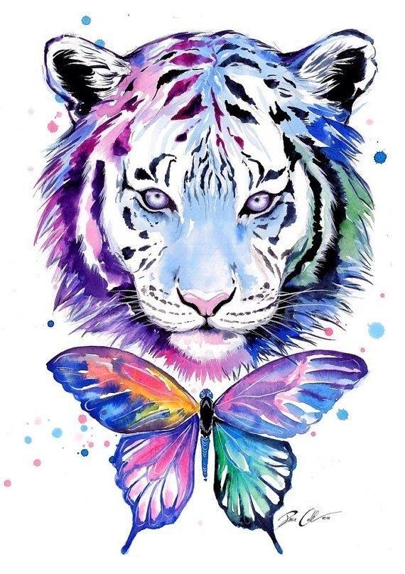 Красивые рисунки тигра для срисовки013