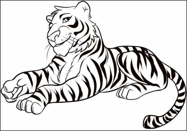 Красивые рисунки тигра для срисовки015