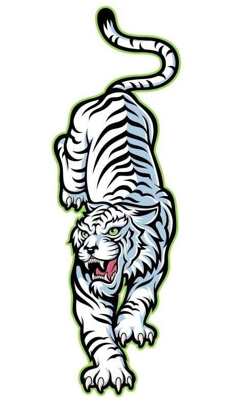 Красивые рисунки тигра для срисовки019