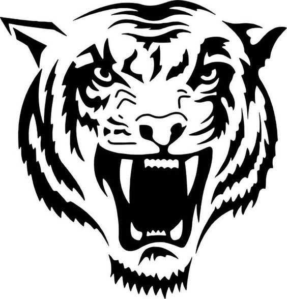 Красивые рисунки тигра для срисовки021