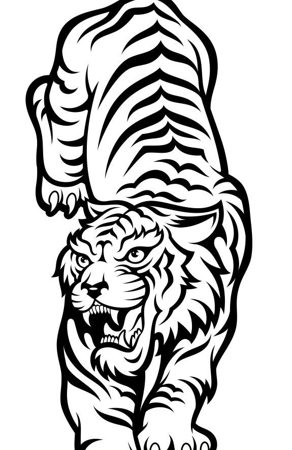 Красивые рисунки тигра для срисовки022