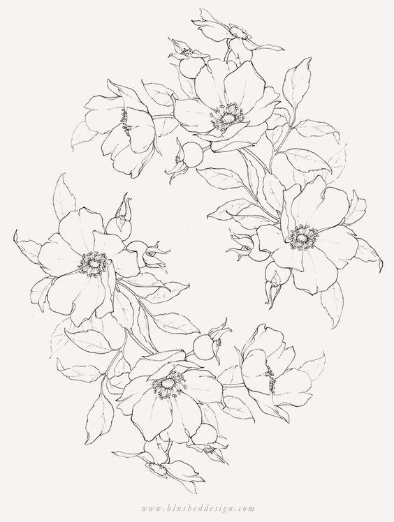Красивые рисунки цветов для срисовки (18)