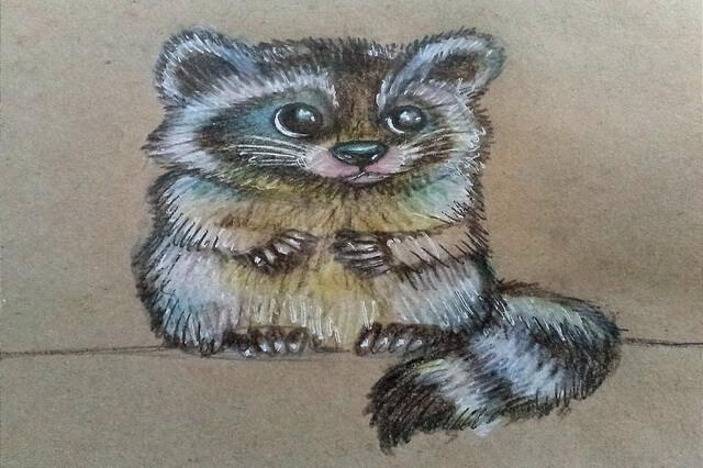 Красивый рисунок акварелью Енот (13)