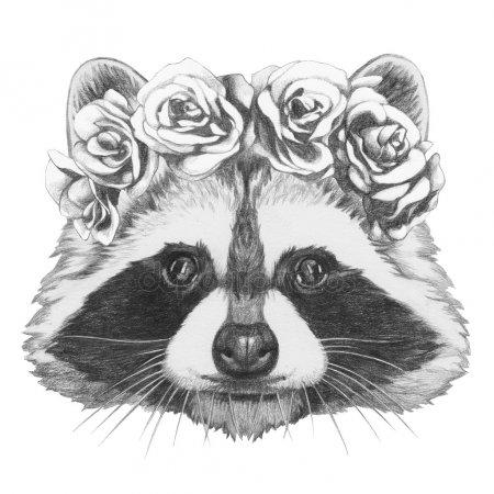 Красивый рисунок акварелью Енот (29)
