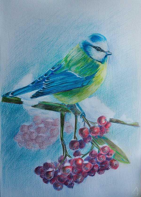 Красивый рисунок красота зимы (10)