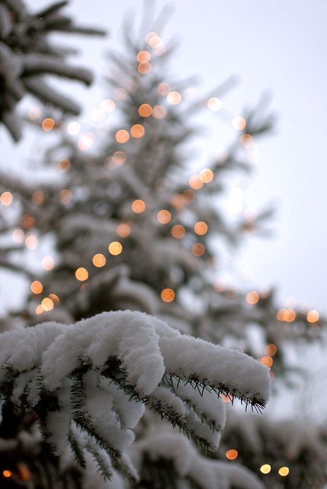 Лучшие заставки зимы на телефон (11)