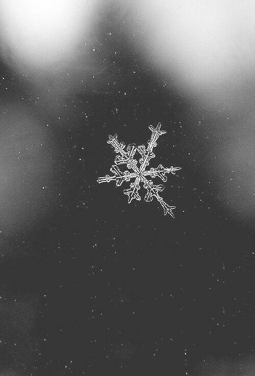 Лучшие заставки зимы на телефон (15)