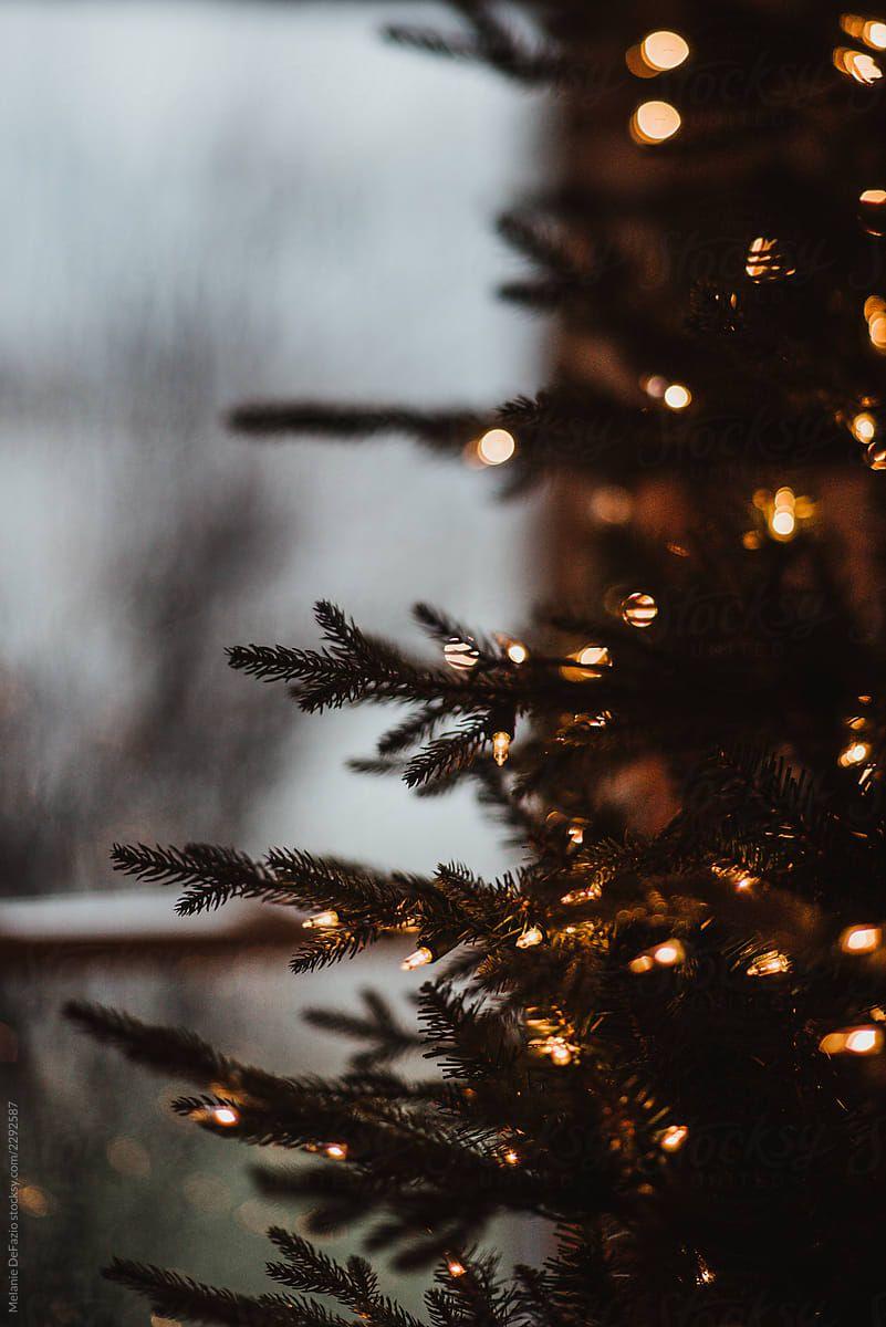 Лучшие заставки зимы на телефон (2)