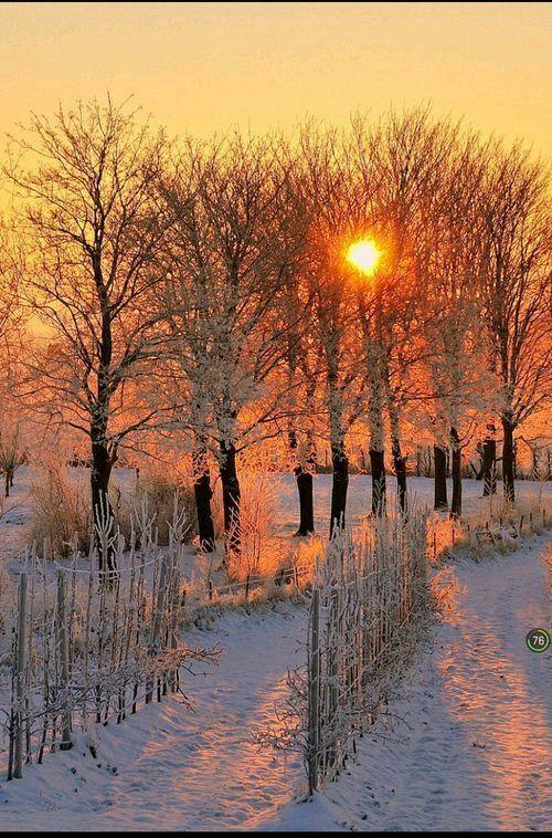 Лучшие картинки зимы на телефон (13)