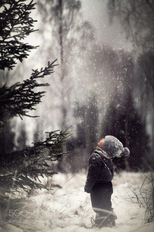 Лучшие картинки зимы на телефон (17)