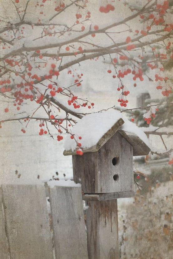 Лучшие картинки зимы на телефон (20)