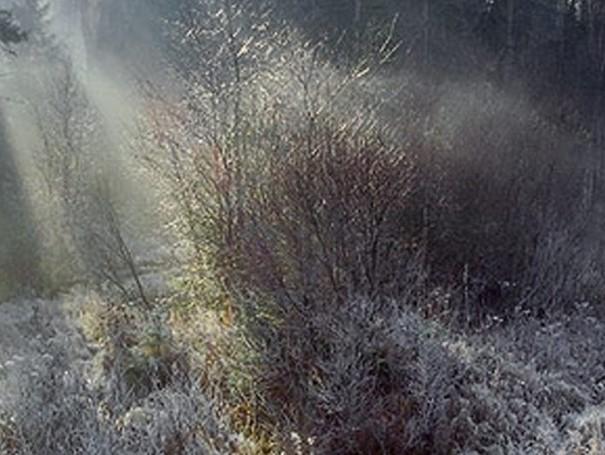 Матрена Зимняя фото и картинки на праздник (1)