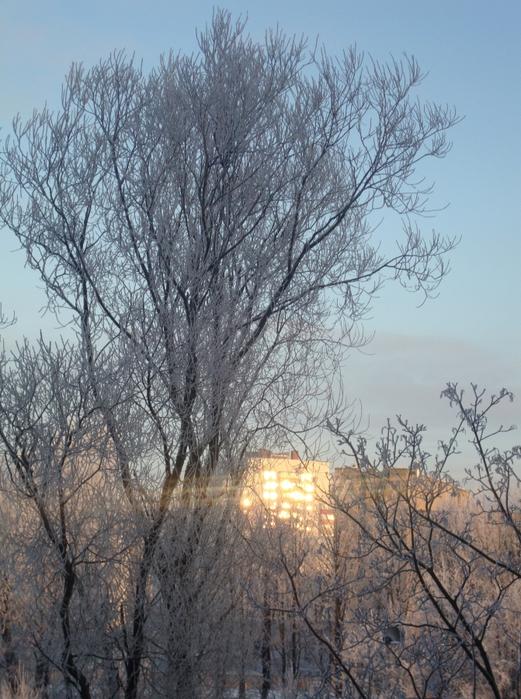 Матрена Зимняя фото и картинки на праздник (13)