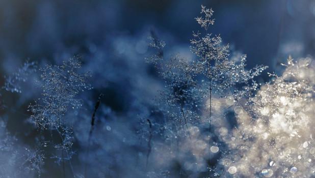 Матрена Зимняя фото и картинки на праздник (8)