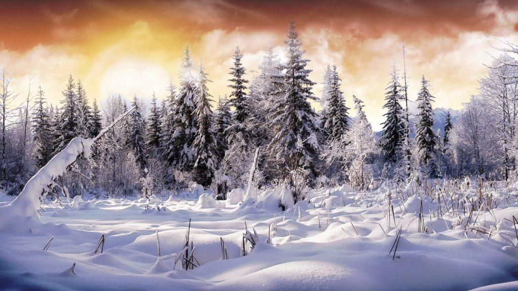 Обои начало зимы на рабочий стол (1)