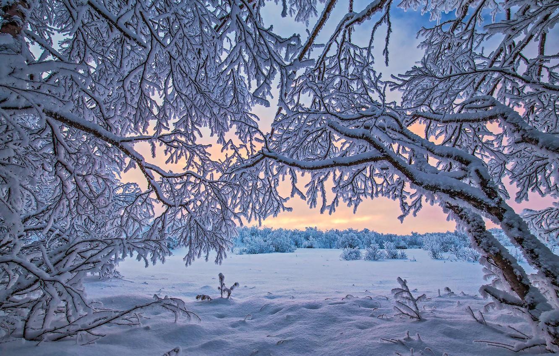 Обои начало зимы на рабочий стол (17)