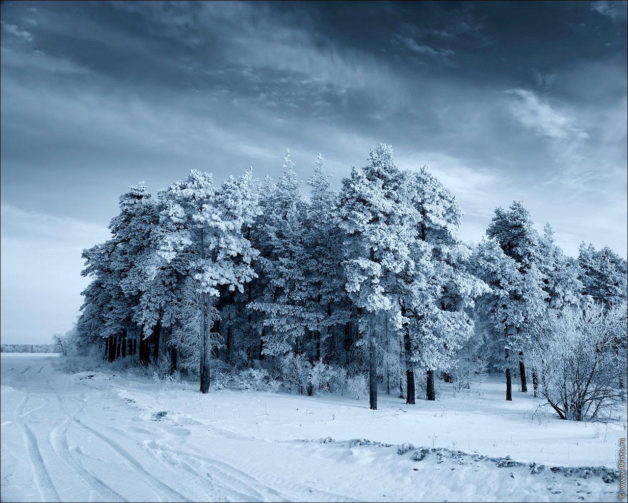 Обои начало зимы на рабочий стол (6)