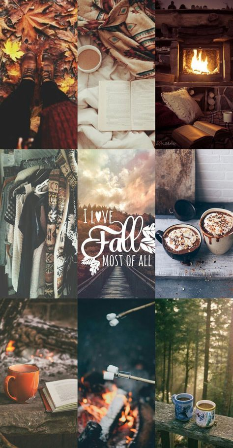 Осень обои на Айфон красивые (14)