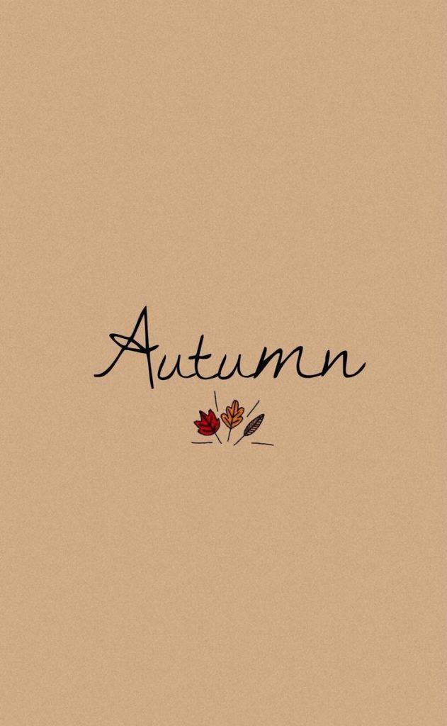 Осень обои на Айфон красивые (17)