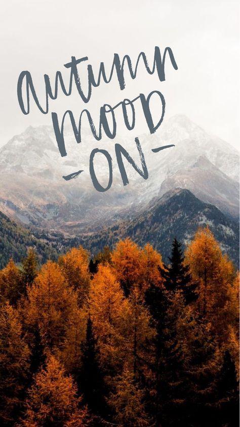 Осень обои на Айфон красивые (18)