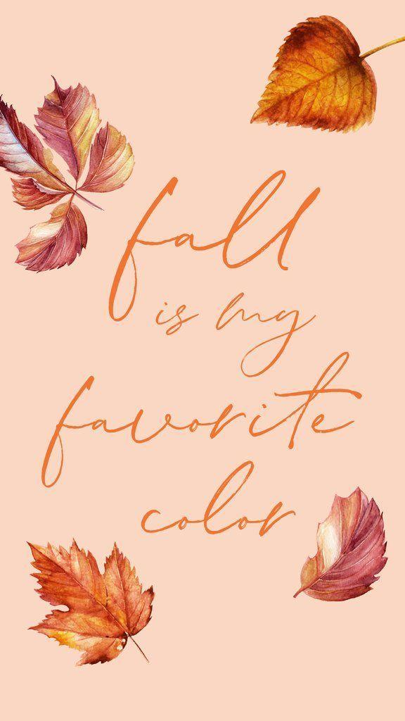 Осень обои на Айфон красивые (22)