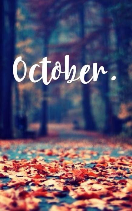 Осень обои на Айфон красивые (24)