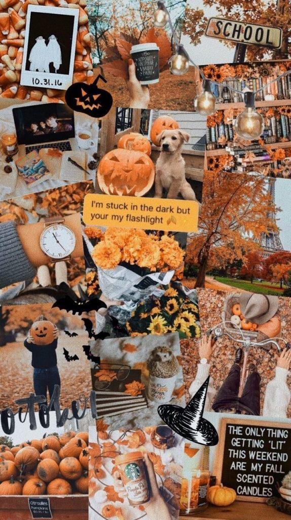 Осень обои на Айфон красивые (28)