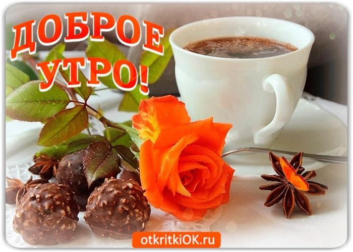 Открытки ежедневные доброе утро008