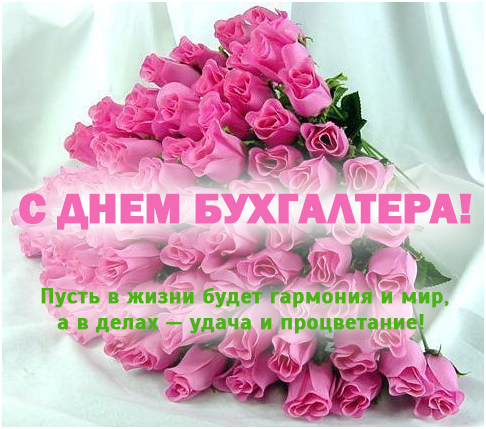Открытки на День бухгалтера в России (23)
