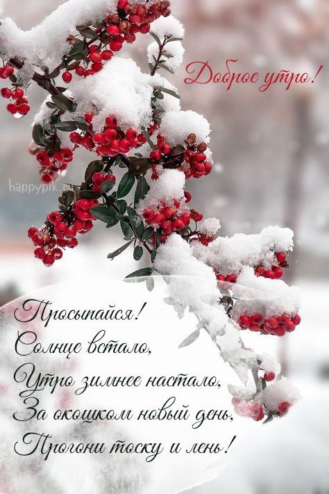 Открытки с зимним добрым утром (3)