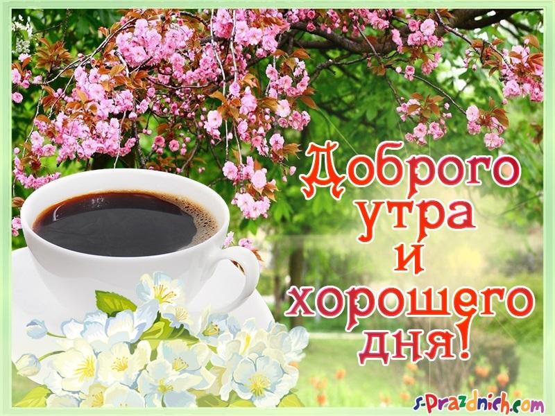 Пожелание доброго утра в картинках018